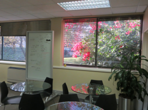 Part of my offices, in Woodmead