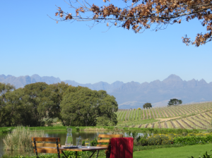 Stellenbosch ... one of my favourite places on Earth
