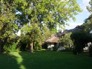 Still summer in the Highveld