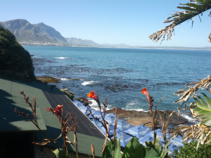 Perfect day in Hermanus indeed